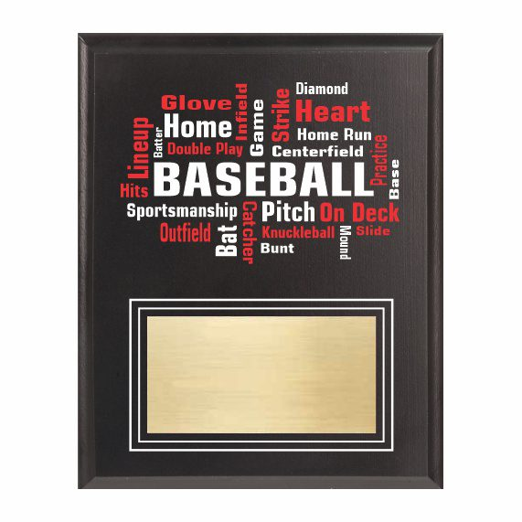 Amazing Competitor series baseball black plaque